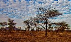 Tanzánie