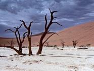 Kaňony a pouště - 9 dní